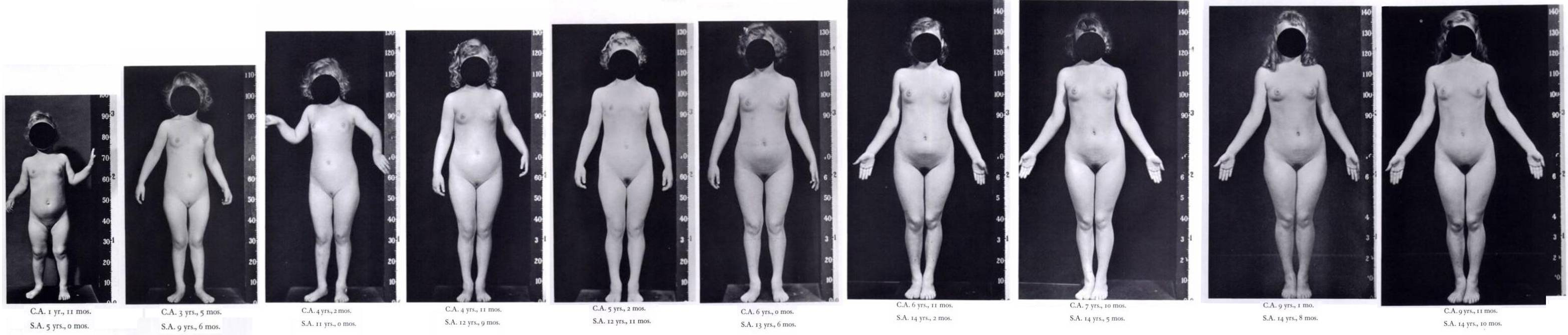 nude photos of female stages of puberty