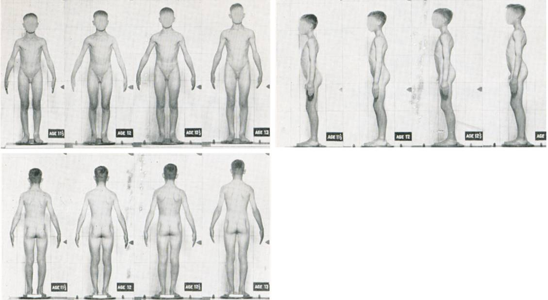 Pass through puberty, this example at puberty page includes the penis first. . . .